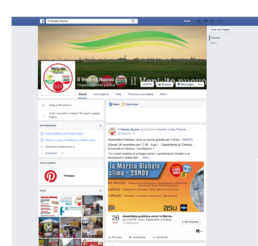 Facebook-politica