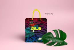 Shopping-Bag-ALE-01
